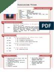 CV JANGCIK (english).pdf