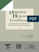 Dh en La Constitucion Comentarios TOMO 1.Desbloqueado