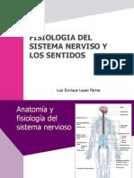 Fisiologia Del Sistema Nervioso y Los Sentidos