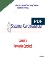 CV6.pdf