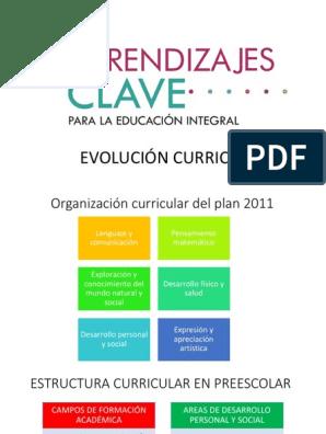 Evolución Curricular En Preescolar Educación De La Primera
