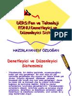 Denetleyici Ve Duzenleyici Sistem