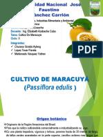 Expo Maracuya