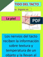 elsentidodeltacto2-140523232100-phpapp01