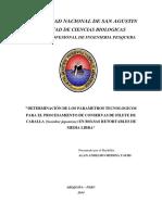 Determinación de Los Parámetros Tecnológicos Para El Procesamiento de Conservas
