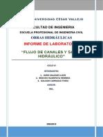 FLUJO EN CANALES.docx