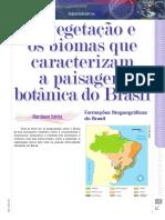 As Características Das Vegetações No Mundo E No Brasil