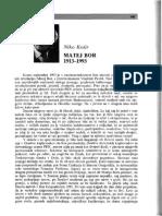About Matej Bor