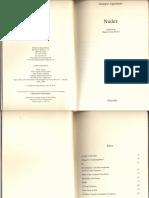Agamben.nudez PDF