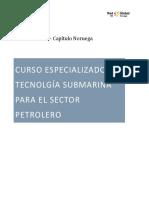 Curso Especializado Tecnologia Submarina Para El Sector Petrolero-1