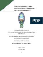 Control y Fiscalizacion al Regimen Tributario Simplificado.pdf