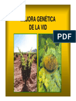 1.-MEJORA_GENETICA_enologia_1_