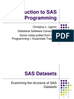 SAS_Overview_Short.pptx