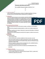 Estructura Del Informe Practica de Campo Gestionriesgo