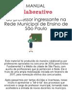 Manual Professor Ingressante Final.pdf