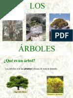 losrboles-100310132757-phpapp02