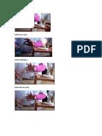 Enlace Quimico Fotos