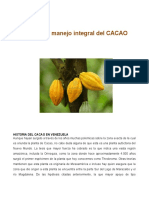 105488367 Manual de Cacao