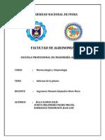 informe de datos meteorologicos.docx