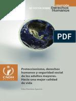 Proteccionismo, Derechos Humanos y Seguridad Social de Los Adultos Mayores