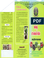 พันธุ์ปาล์มน้ำมัน_โดยกรมวิชาการเกษตร 8.pdf