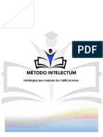 Manual-Intelectum.pdf
