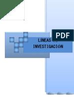 Líneas de Investigación-2017