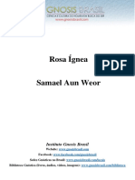 Rosa Ígnea