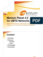 Mentum Planet.pdf
