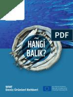 20161025 Balik Rehberi Web