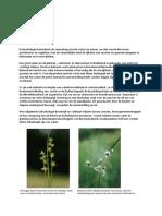 Dictaat Natuurkennis Ecohydrologie