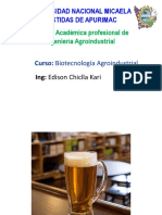 bIOTECNOLOGIA PRODUCCION ENZIMAS