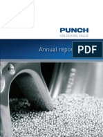 Punch International ANNUAL REPORT 2007