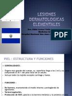 DERMATOLOGÍA_Como afrontar las lesioneselementalesdelapiel.pdf