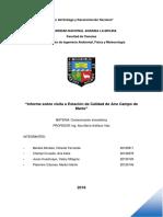 Informe10 contaminacion atmoseferica