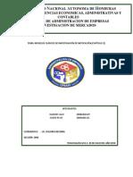 Informe Final Inv de Merc..Docx