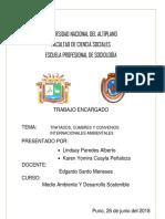 AMBIENTE TRATADOS.docx