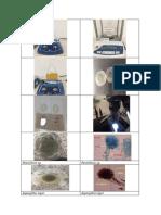 Imagnes de Aspergillus Niger y Penicillium