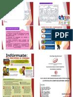 TRIPTICOS-DE-PROYECTO.pdf