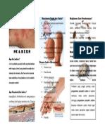 359344716 Leaflet Scabies