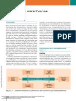 Pautas de Diagnóstico y Terapéutica en Dermatologí... ---- (Pg 129--137)