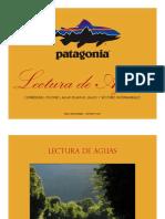 Lectura de Aguas Pablo Negri Edwards