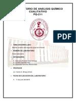 info.aniones 2 al 60%.docx