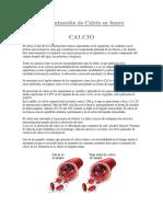 92110684-Determinacion-de-Calcio-en-Suero.docx