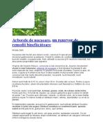 Arborele de nucșoare.docx
