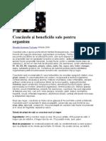 Coacăzele și beneficiile sale pentru organism.docx