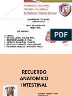 Seminario Anastomosis Intestinal