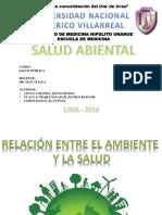 14. Seminario SALUD AMBIENTAL Salud Publica