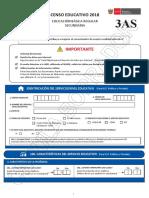 Cedula 3AS Censo Educativo 2018.pdf