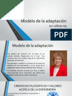 Modelo de La Adaptación ROY